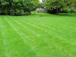 Southbury, CT - Fall Season Lawn Care & Landscape Maintenance Service