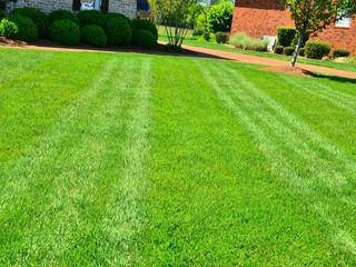 CT Lawn Care Maintenance | Southbury, Danbury, Brookfield, CT