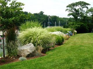 Newtown, CT | Deer Management & Control | Best Deer Repellent Service Near Me