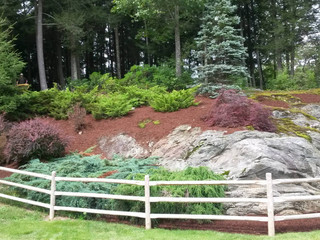 Does professional landscape design increase property value? | Southbury, Connecticut