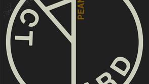 Yard Act – 'Peanuts' Review