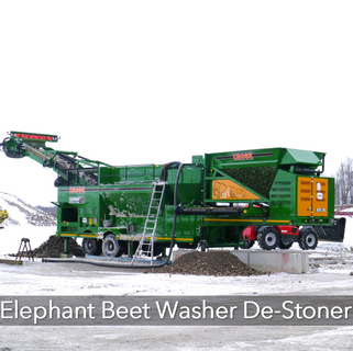 Elephant Beet Washer.PNG