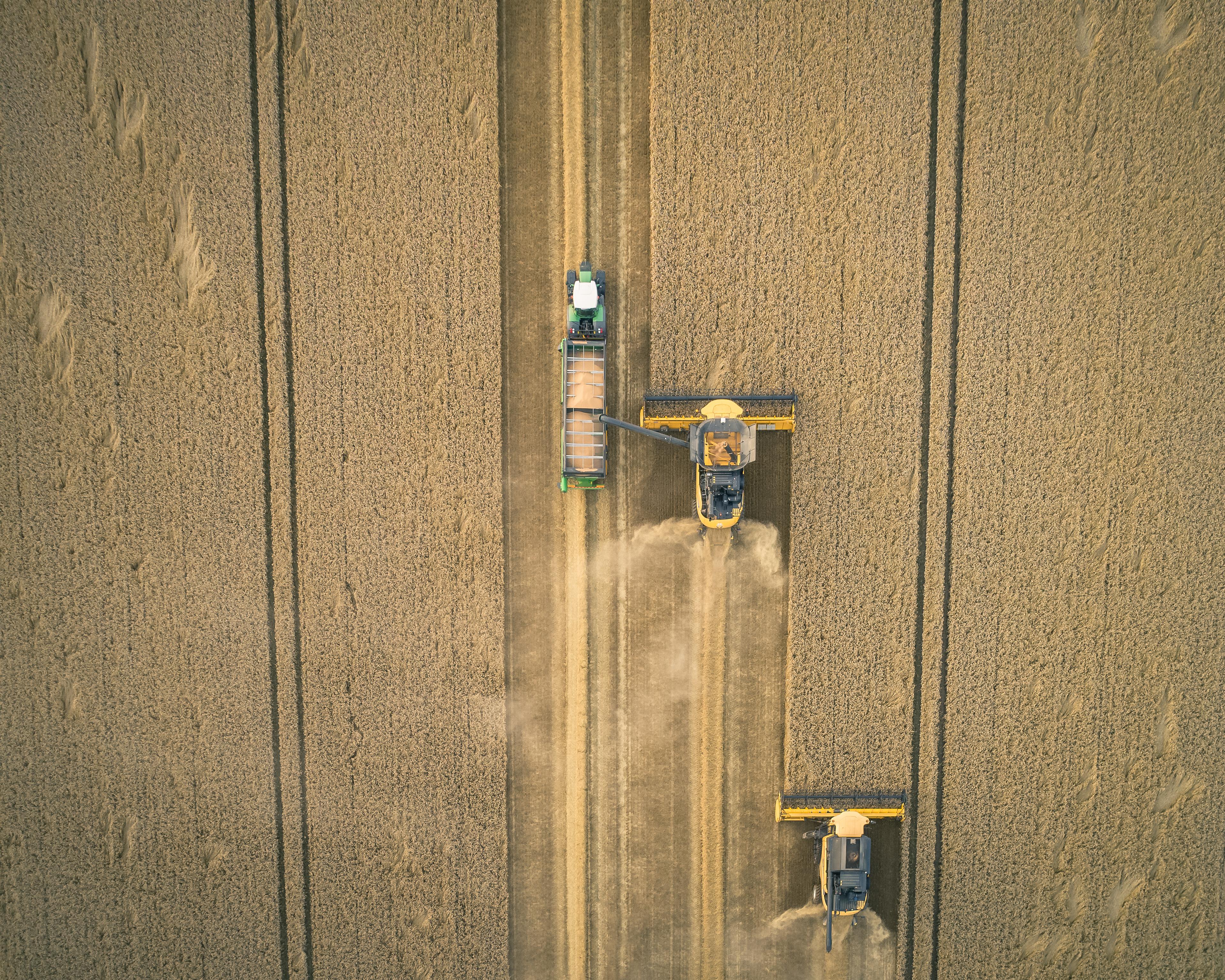 Cross Split Chaser Bin -Drill Filler