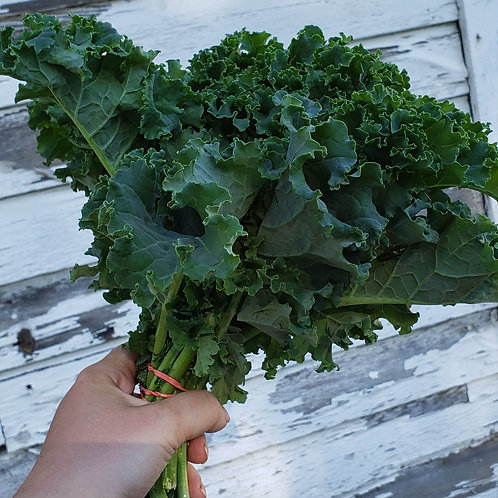 Kale by the Bunch