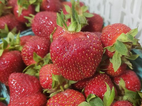 Frozen Strawberries, per Pint, Sliced
