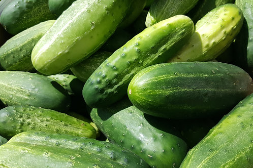 Pickling Cucumbers by the Pound