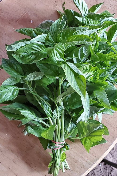 Basil by the Bunch