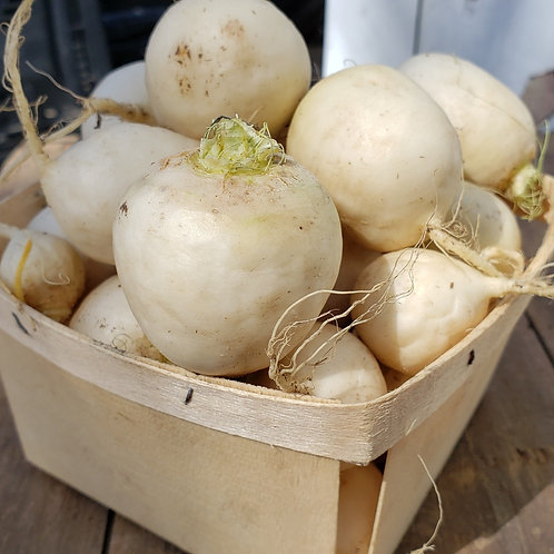 Turnips by the Quart