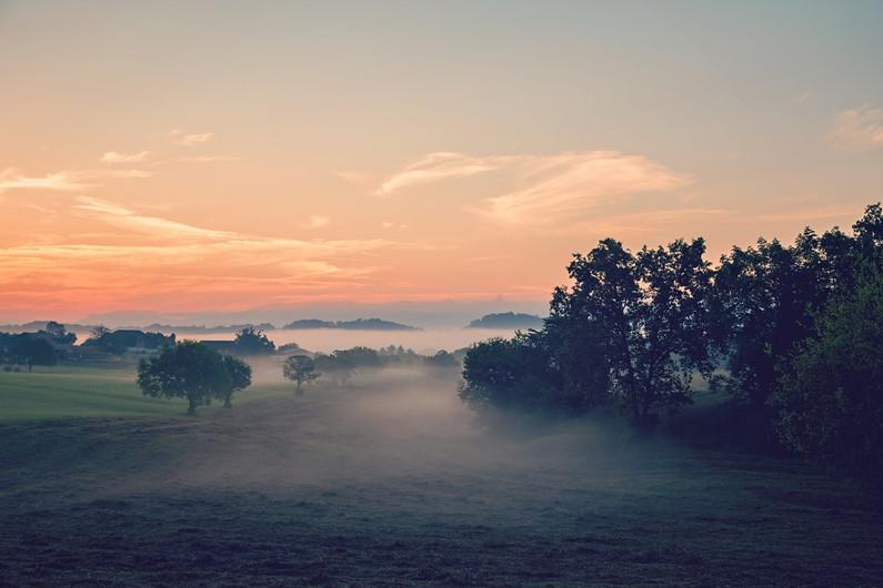 Foggy Sunset.jpeg