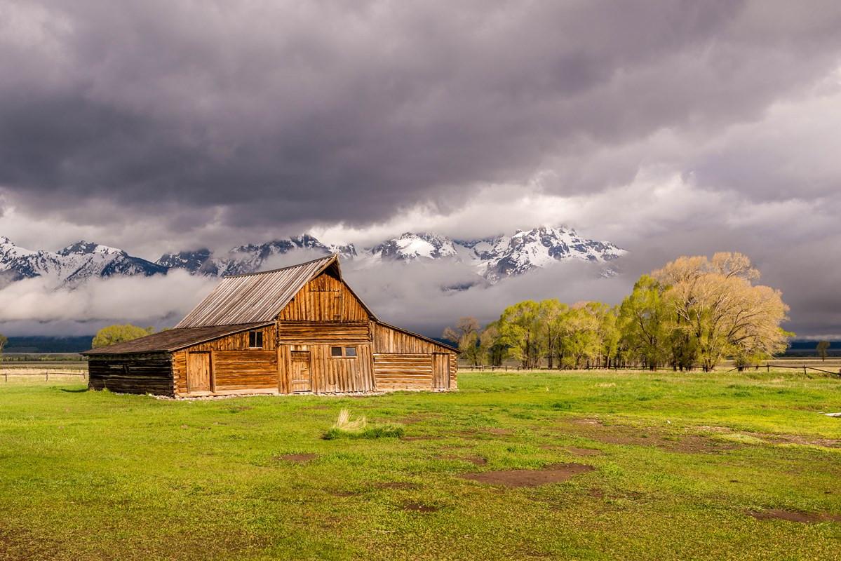 Springtime in Wyoming.jpeg