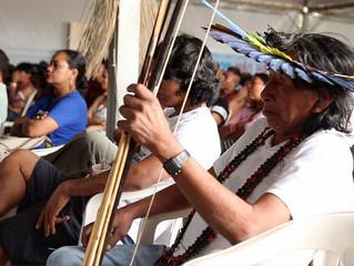 Agronegócio na Amazônia: logística e tecnologia sustentam modelo colonialista