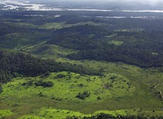 Mineradoras canadenses souberam de extinção de reserva na Amazônia 5 meses antes do anúncio oficial