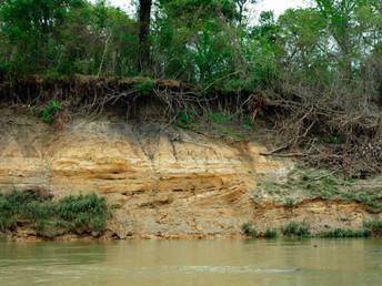 Agrotóxicos chegam às bacias de abastecimento público. Entrevista especial com Denise Barbosa da Vei