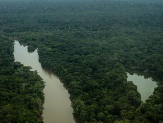 A Amazônia não é nossa