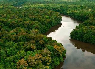 Temer extingue reserva de 4 milhões de hectares e libera exploração mineral