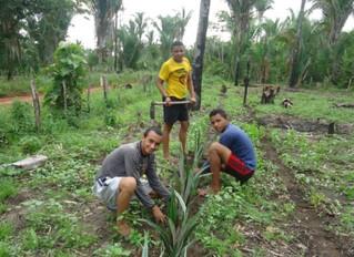 Juventude quer transformar realidade no campo para ali fincar raízes