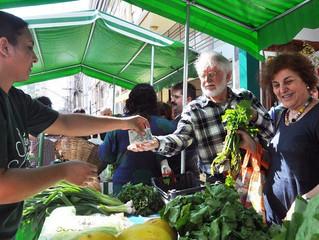 Agricultura familiar e reforma agrária são os maiores produtores de orgânicos no Brasil