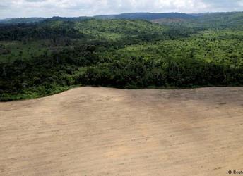 Os riscos ao meio ambiente no governo Bolsonaro