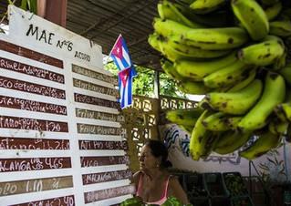 'Modelo agroecológico cubano poderia salvar o mundo', diz escritor Raj Patel