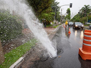 Perdas de água potável na distribuição, artigo de Roberto Naime