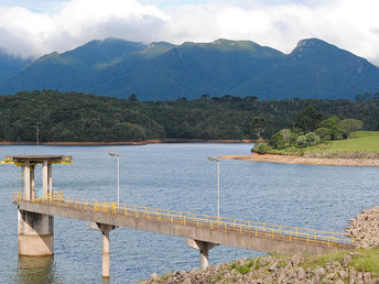 Produtores rurais de Curitiba receberão apoio financeiro para preservar