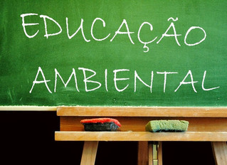 Educação Ambiental: Quem é o alvo?