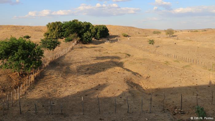 Leito de rio no Ceará sem água há cinco anos