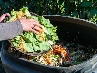 Rede Save Food Brasil marca mobilização contra desperdícios de alimentos
