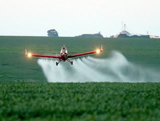 ´Pacote do Veneno' é denunciado por ativistas da agroecologia