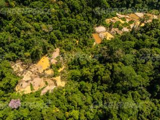 Renca: Temer revoga polêmico decreto que ameaça reservas da Amazônia