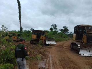 Amazônia: em 4 anos, desmatamento em Unidades de Conservação quase dobra