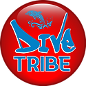THE DIVE TRIBE LOGO.png