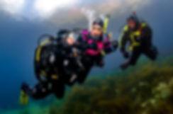 A group of divers, Solomon Baksh, The Dive Tribe Limites, Dive courses Trinidad