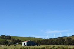 View of the Wind Turbines, Toora