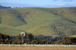 Hills and Windmills, Toora