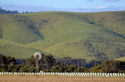 Green Hills at Toora