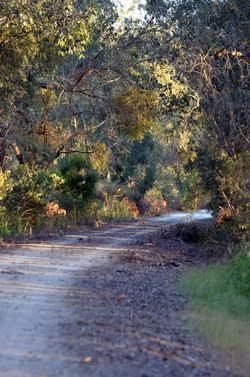 Trail-View-SCtoM-lo
