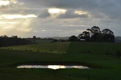 SC Farmland1