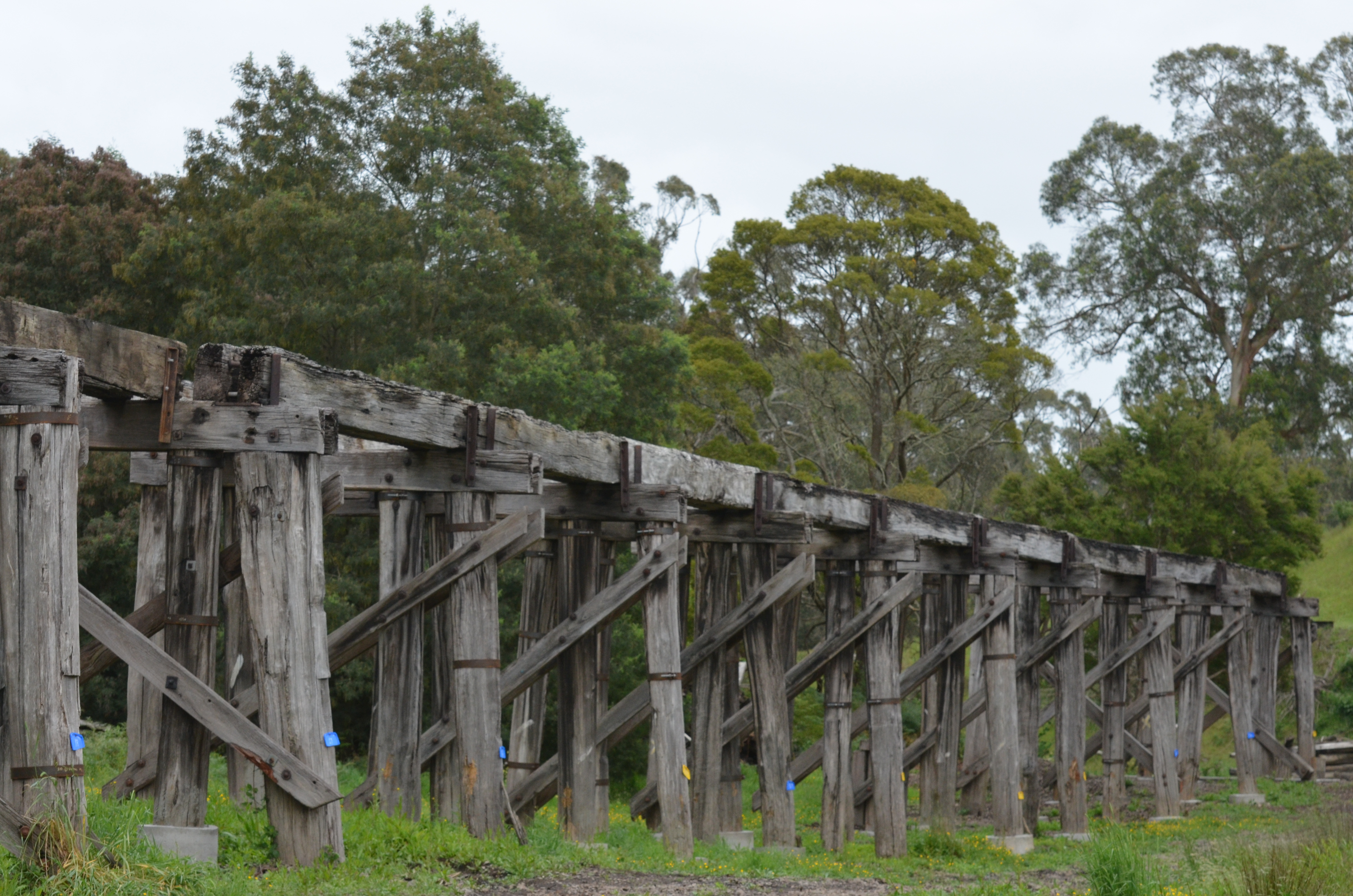 Koonwarra Bridges