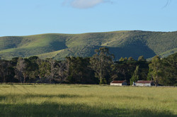 Rusty Red Sheds, Toora