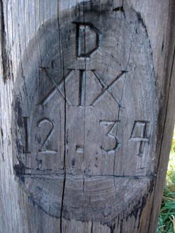 K-Adzed-Timber6_lo