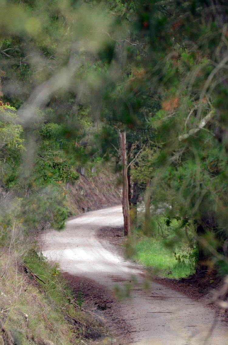Koonwarra, Rail Trail View