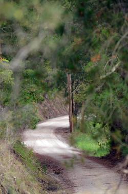 K-trail-view-west-vert_lo