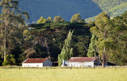 Red Sheds at Toora