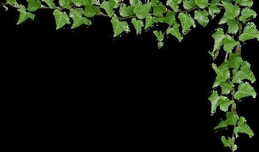 kissclipart-leaf-clipart-paper-stencil-7