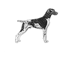 The Hunter Public House