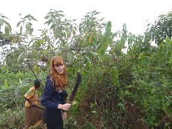 Helping to clear the land