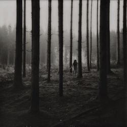 Abraham Fogg - Metamorphosis - Small.jpg