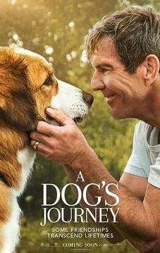 A DOG'S JOURNEY 2019 - FOX.jpg