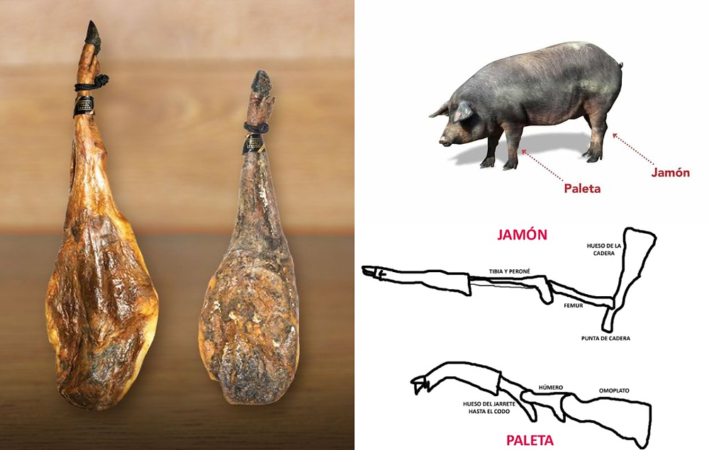 На фото слева: хамон и палета
